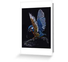 Kingfisher Drawing Greeting Card