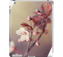 spring in the air iPad Case/Skin
