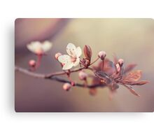 spring in the air Metal Print