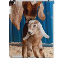 Licked Clean iPad Case/Skin