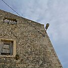 Old Harbour Building in Trsteno by jojobob
