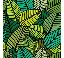 Deep Green Striped Leaves Photographic Print
