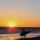 iphone-Surfer Sunset by Christine Anna Wilson