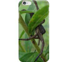 Hide and seek iPhone Case/Skin