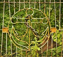 Rusty Anchor Gate by Alexandra Lavizzari