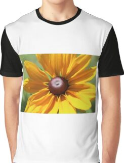 Black Eyed Susan Graphic T-Shirt