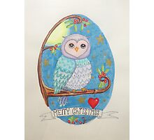 Colorful cute Little christmas forest owl Photographic Print