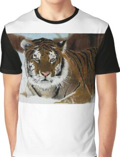 Tiger in Snow Graphic T-Shirt