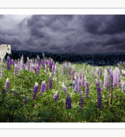 A Childs Dream Among Lupine Sticker