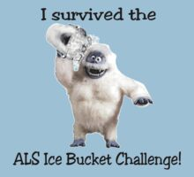 I survived ALS Ice Bucket Challenge Bumble by David Bodo