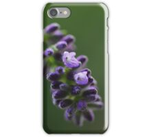 Lavender flower iPhone Case/Skin