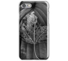 Leaf Variations iPhone Case/Skin