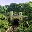Clayton Rail Tunnel Entrance, Sussex, England by Stephen Frost