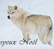 Arctic Wolf Christmas Card - French - 9 by WolvesOnly