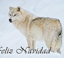 Arctic Wolf Christmas Card - Spanish - 9 by WolvesOnly