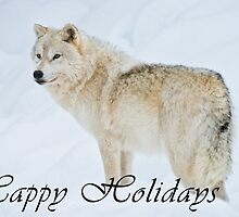 Arctic Wolf Holiday Card - 9 by WolvesOnly