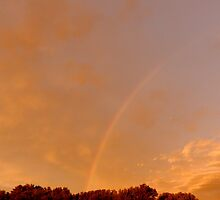 Rainbow by WildThingPhotos