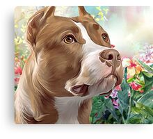 Pit Bull Painting  Canvas Print