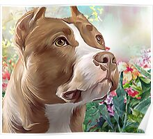 Pit Bull Painting  Poster