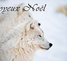 Arctic Wolf Christmas Card - French - 11 by WolvesOnly