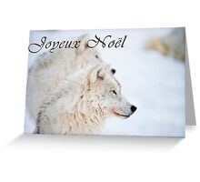 Arctic Wolf Christmas Card - French - 11 Greeting Card