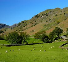 Deepdale Valley, the Lake District by rodsfotos
