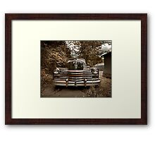 Abandoned 1948 Cadillac Limo Framed Print