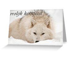 Arctic Wolf Christmas Card - Dutch - 12 Greeting Card