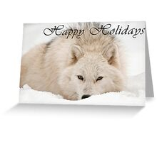 Arctic Wolf Holiday Card - 12 Greeting Card