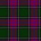 New Hampshire State Tartan by Confundo