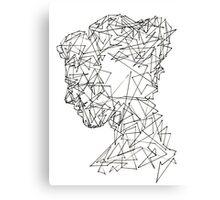 Shards 2 Canvas Print