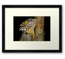 Sleeping Dragon Framed Print