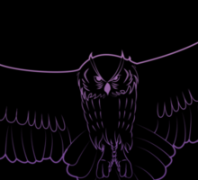 Soaring Owl Gradient Sticker