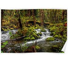 About The Green Stuff ~ Oregon Scenic Rivers ~ Poster