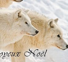 Arctic Wolf Christmas Card - French - 13 by WolvesOnly