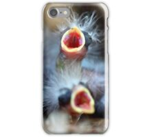 Baby Birds iPhone Case/Skin