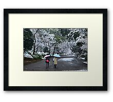 Colours in the park Framed Print