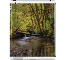 Keep Cool ~ Whittaker Creek iPad Case/Skin
