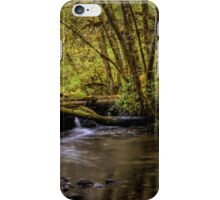 Keep Cool ~ Whittaker Creek iPhone Case/Skin