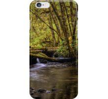 Keep Cool ~ Whittaker Creek iPhone Case/Skin