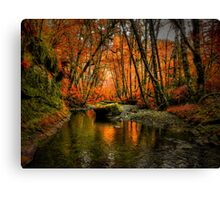 I'll Take It ~ Fall Colors On Whittaker Creek ~ Canvas Print