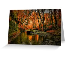 I'll Take It ~ Fall Colors On Whittaker Creek ~ Greeting Card
