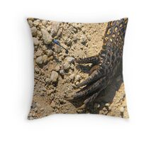 The Dragon and the Fly Throw Pillow