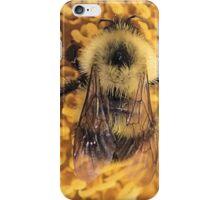 Bumble Bee '14 iPhone Case/Skin