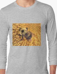 Bumble Bee '14 Long Sleeve T-Shirt