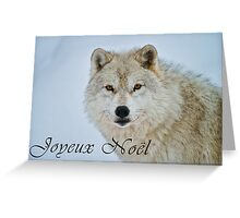 Arctic Wolf Christmas Card - French - 15 Greeting Card