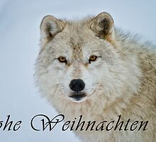 Arctic Wolf Christmas Card - German - 15 by WolvesOnly