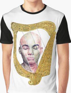 Irish Harp - Diversity in Ireland Graphic T-Shirt
