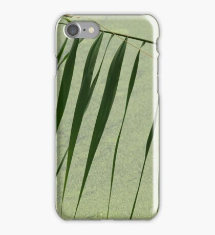 Green by Elisabeth and Barry King™ iPhone Case/Skin