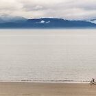 Rider on the Sand – Homer, Alaska by Owed To Nature